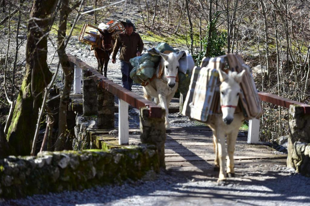 Mazge služe i za dostavu do planinarskog doma u NP-u Paklenica
