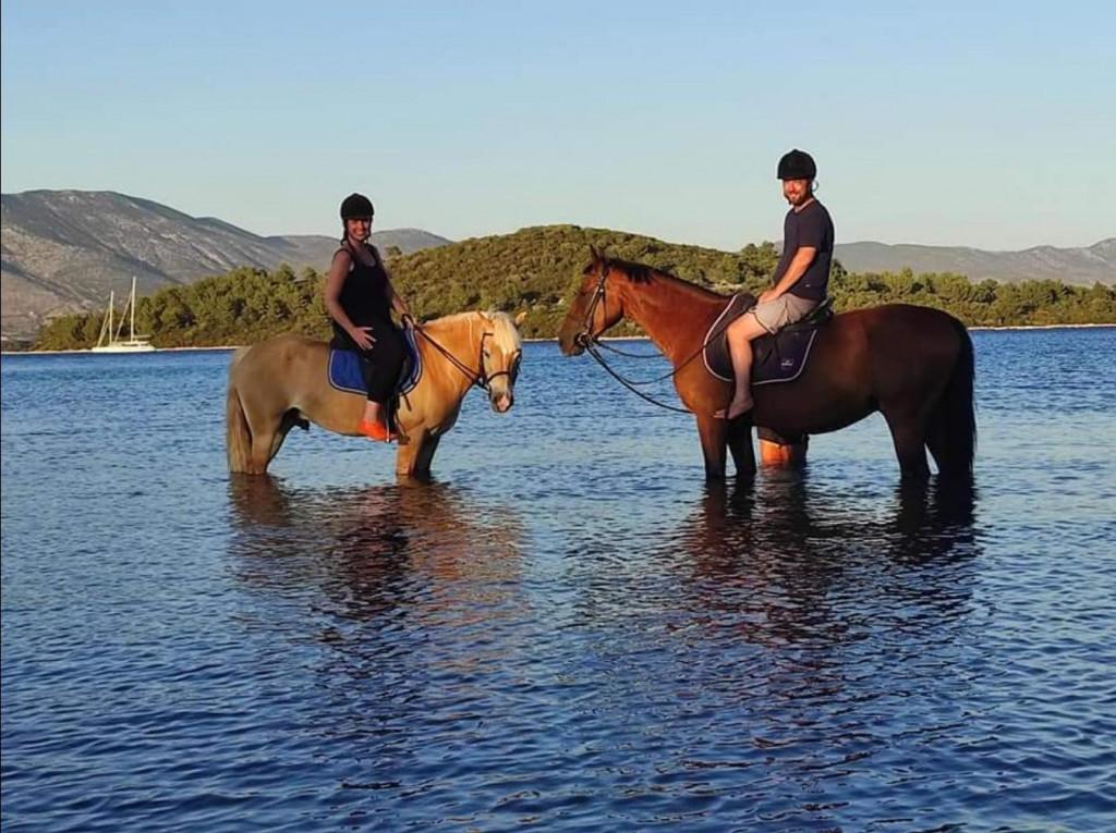 horse riding Korčula apsolutni je hit gdje se pruža užitak jahanja i plivanja s konjima ali i terapije s konjima za ozbiljne dijagnoze