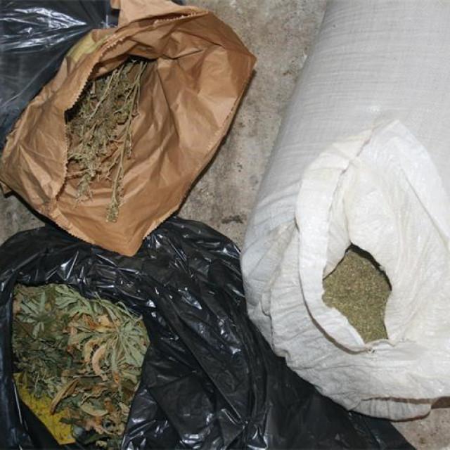 U Metkoviću je pronađena plantaža marihuane