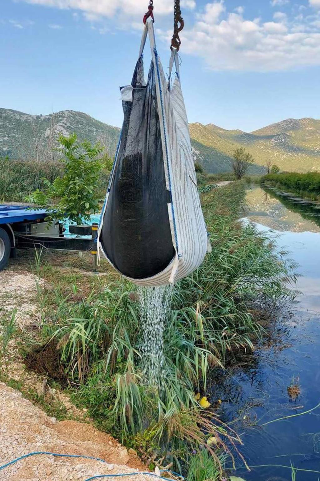 Na pilot području jezera Kuti počelo uklanjanje invazivne vrste