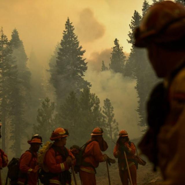 Požari uništavaju šume