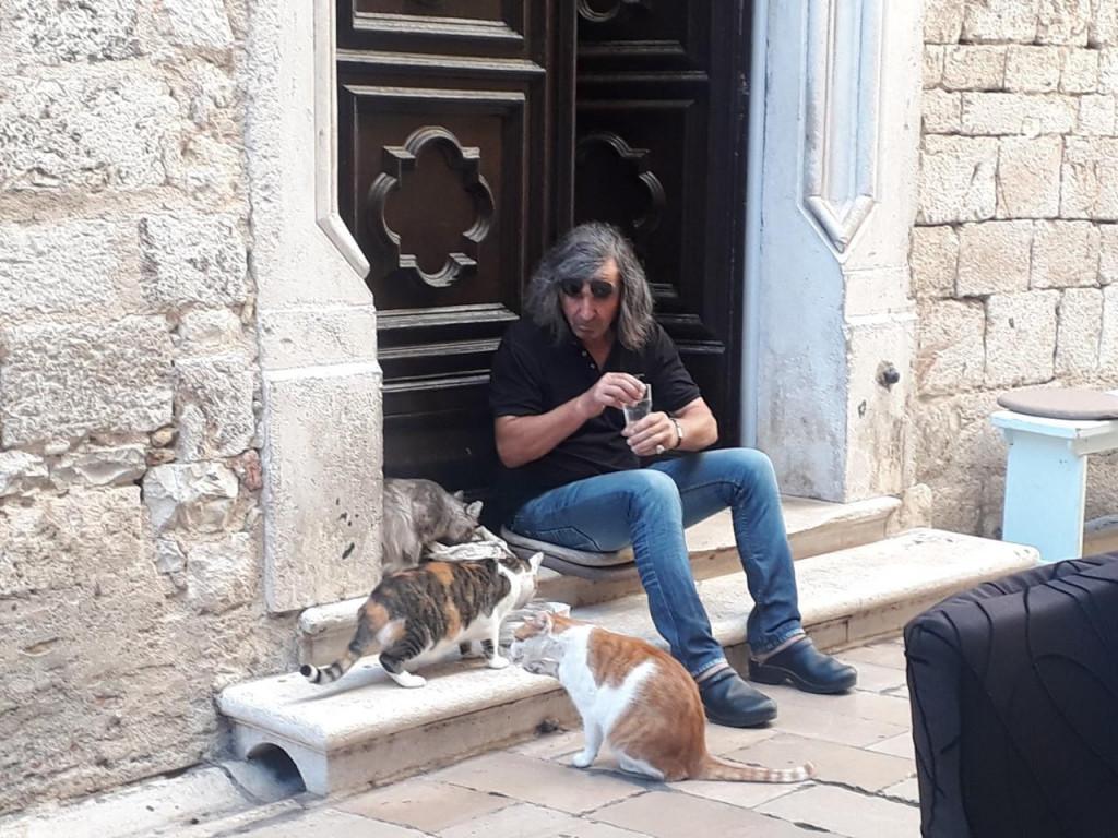 Pefa i mačke su svakodnevna atrakcija na 'četiri kantuna'