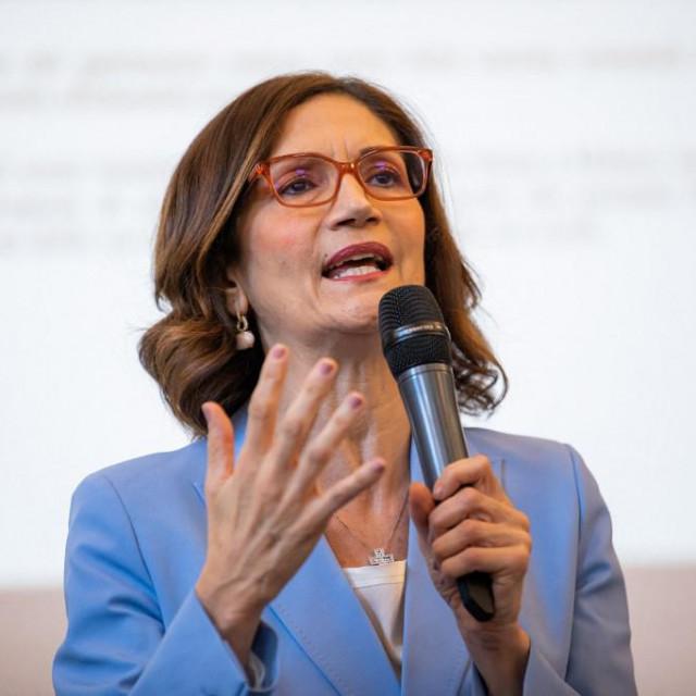Predlagateljica, ministrica Mariastella Gelmini iz konzervativne je stranke Silvija Berlusconija Forza Italia.