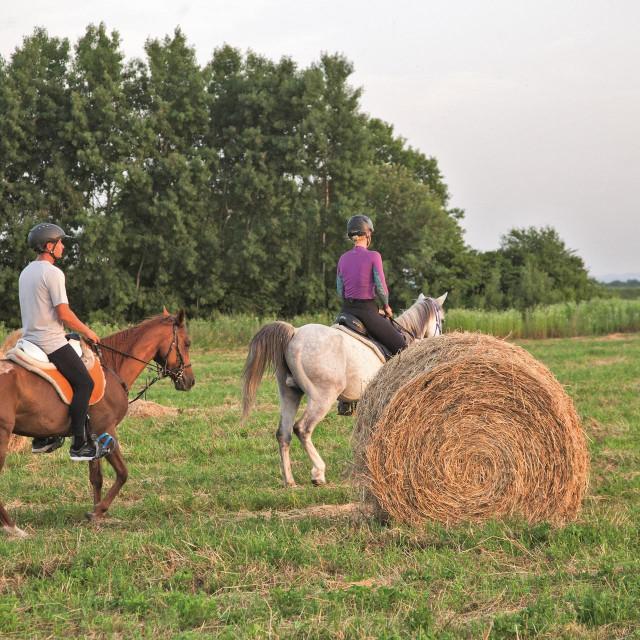 Konjički sport u Slavoniji ima sve više pobornika<br />