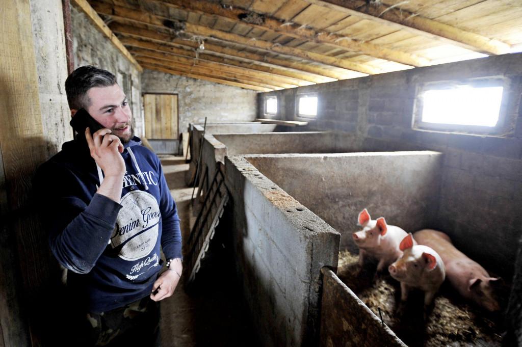 Potpora mladim poljoprivrednicima u iznosu od 15 do 50 tisuća EUR-a.<br />