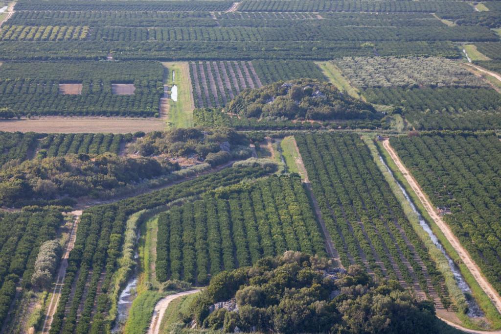 Najviše državnih parcela ima na području Opuzena<br />